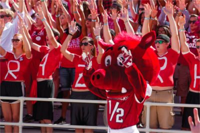 Razorback Athletics Fans in the stands